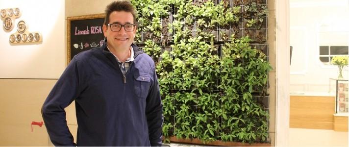 plantas on wall 3